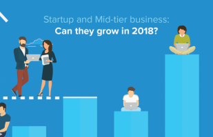 Startup and Mid-tier business: Can they grow in 2021?