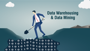 The What's What of Data Warehousing and Data Mining