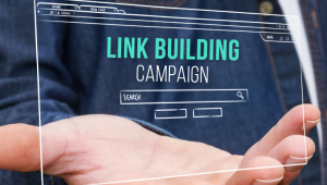Must-have Ingredients of Every Link Building Campaign