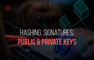 What are Hashing, Signatures and Public-Private Keys