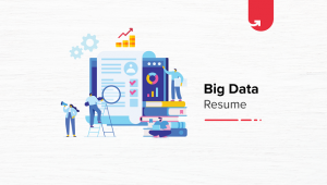 Big Data Resume: Complete Guide & Samples [2021]