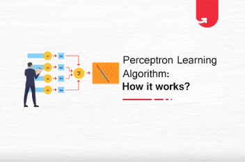 Perceptron Learning Algorithm: How it works?