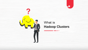 Hadoop Clusters Overview: Benefits, Architecture & Components