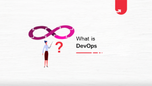 What is DevOps? A Comprehensive Guide For Beginners [2020]