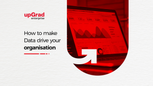 How to Make Data Drive Your Organization?