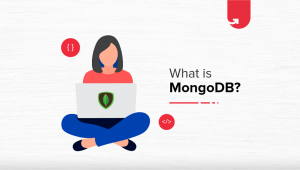 What Is MongoDB? Introduction, Data Modeling, Terminology & Hierarchy