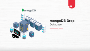 MongoDB Drop Database [With Code Example]