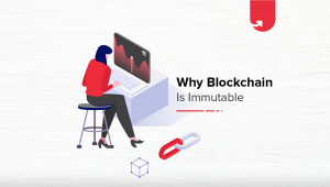 What Makes a Blockchain Network Immutable? Immutability Explained