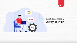 Multidimensional Array in PHP [With Examples]