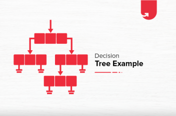 Decision Tree Example: Function & Implementation [Step-by-step]