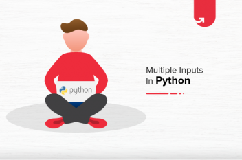 Multiple Inputs From User in Python | Python Input Program