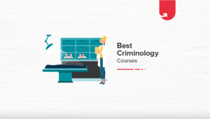 7 Best Online Criminology Courses to Improve Your Career in 2021