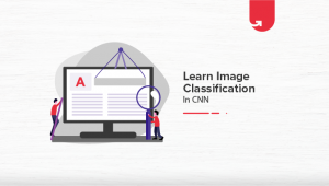 Image Classification in CNN: Everything You Need to Know