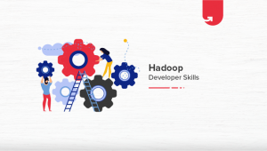 Top 16 Hadoop Developer Skills You Should Master in 2021